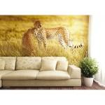 Murales Africa