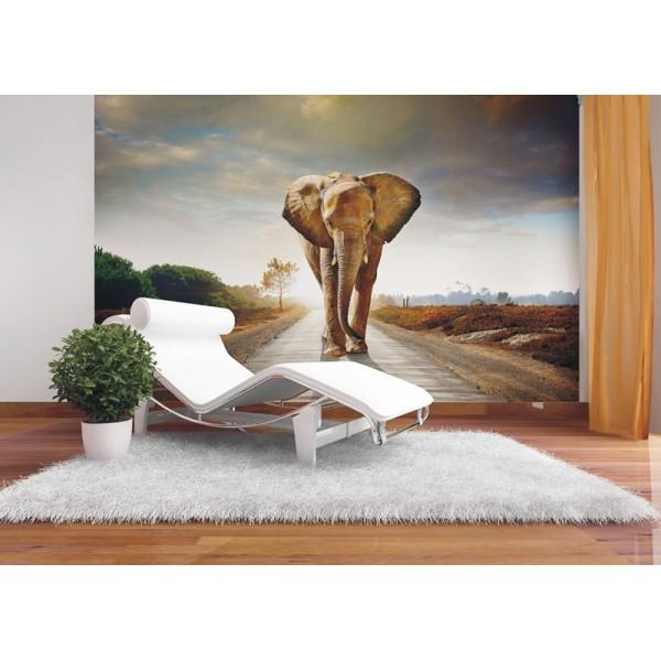 Murales Elefantes
